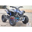 Pre-Order Renegade Blue 48V/1060 watt Motor Shaft Driven ETA 28/09/2020-4