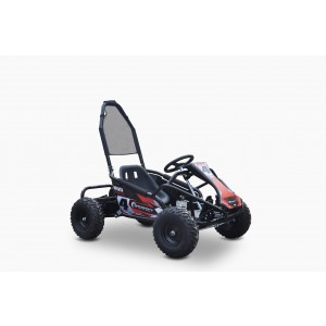 Electric Go Kart 48V with 1000w Brushless Motor In Stock