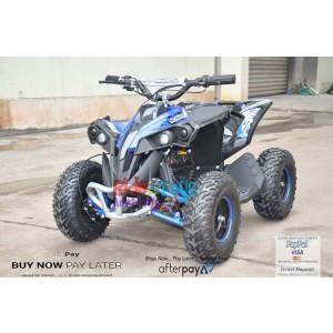 Renegade Blue 48V/1000 watt Motors. In Stock