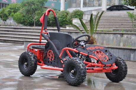 Electric Go Kart 48V with 800w Brushless Motor