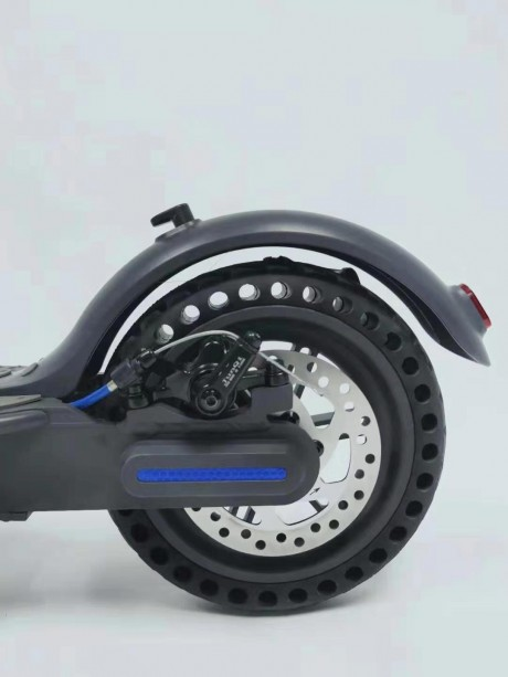 2021 Electric Scooter with 350 Watt Brushless Motor-11
