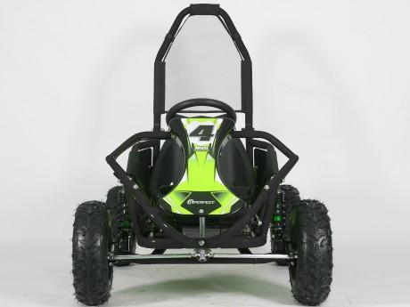 Pre-Order Black and Green  Electric Go Kart 48V with 1000w Brushless Motor ETA 07/12/2021 -2