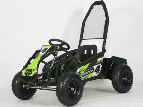 Pre-Order Black and Green  Electric Go Kart 48V with 1000w Brushless Motor ETA 07/12/2021 -1