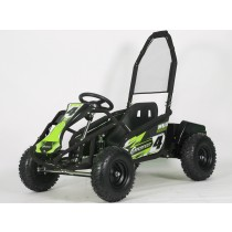 Pre-Order Black and Green  Electric Go Kart 48V with 1000w Brushless Motor ETA 07/12/2021