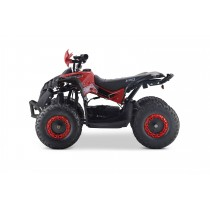 Pre Order Renegade Red 48V/1060 watt Motor Shaft Driven ETA 07/12/2021