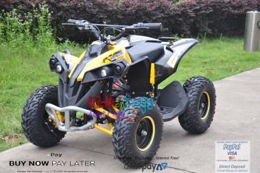 Renegade Yellow 48V/1000 watt Motors. In Stock