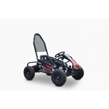 Pre-Order Electric Go Kart 48V with 1000w Brushless Motor ETA 28/09/2020