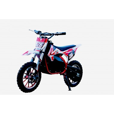 Red Electric Dirt Bike 36V 500 Watt Motor