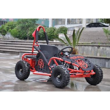 Electric Go Kart 48V with 800w Brushless Motor