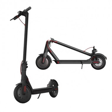 2021 Electric Scooter with 350 Watt Brushless Motor